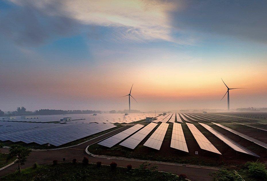 nectr-renewable