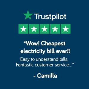 trust pilot review
